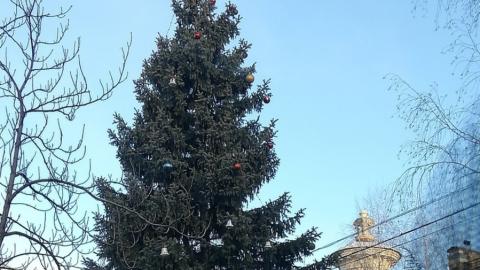 Студентов СГМУ 8 марта встречала новогодняя елка