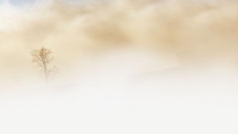 Саратовцев предупредили о порывах ветра, гололедице и тумане