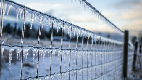 Выходные будут снежными и дождливыми
