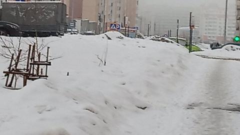 Сегодняшний снегопад не огорчил саратовцев