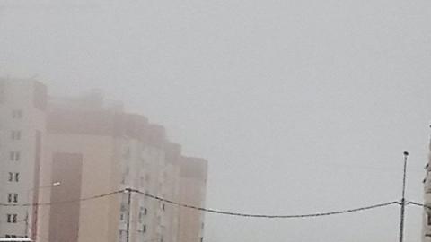 Туман и снегопады. ГИБДД просит водителей воздержаться от дальних поездок