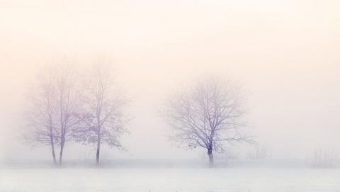 Снегопады и ветер продержатся до вечера