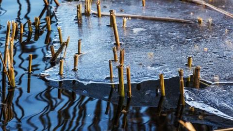Дожди и снег уходят из Саратовской области