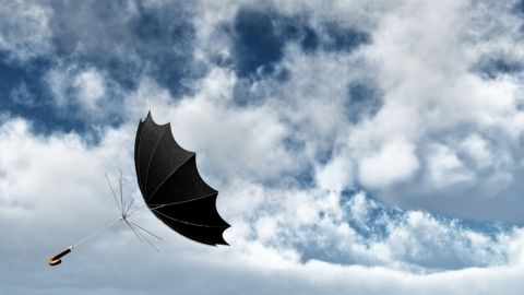 МЧС предупредило о сильных порывах ветра