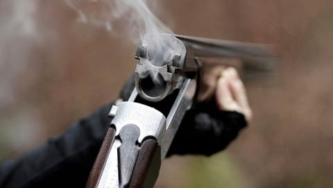 Депутат изготовил огнестрел для отпугивания зверей и попал под следствие