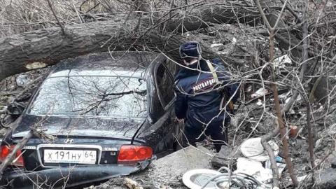 Росгвардейцы помогли водителю, в машине которого после аварии заклинило двери