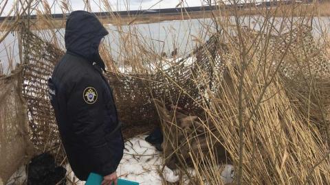 Сотрудник колонии погиб на охоте от пули вертолетчика