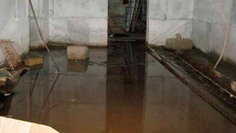 Паводок 2019. Грунтовые воды подтопили дом в Вольске