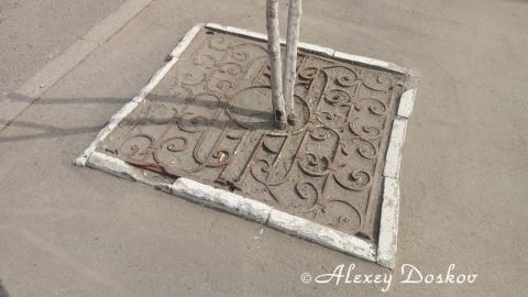 В центре Саратова обломками старинной ограды прикрыли деревья