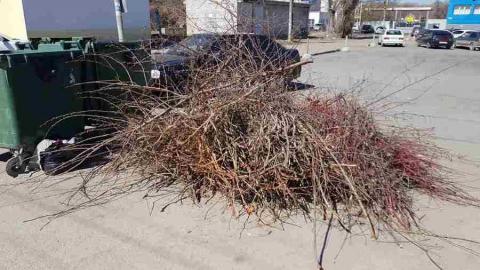 Регоператор создал все условия для легального вывоза мусора после субботников