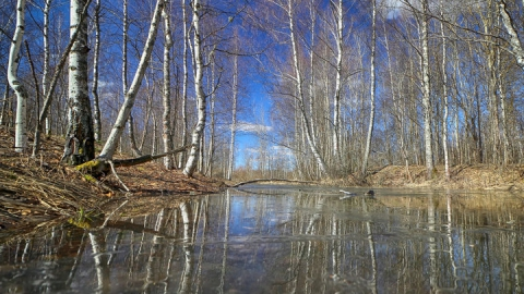 В Саратовскую область возвращается тёплая и сухая погода