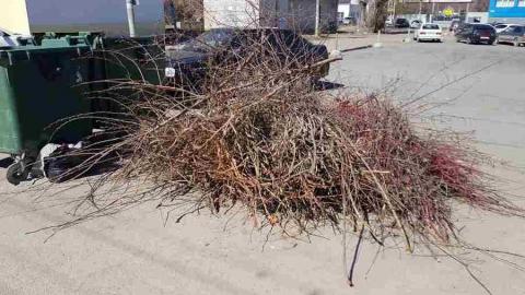 Регоператор: Складировать уличный мусор на контейнерных площадках незаконно и недопустимо
