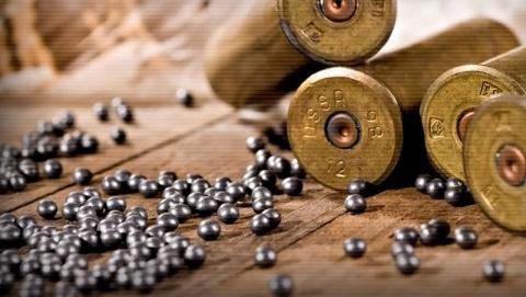 В Энгельсском районе нашли застреленного мужчину