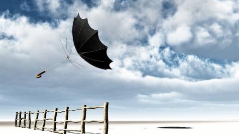 Сильный ветер принесёт небольшое потепление