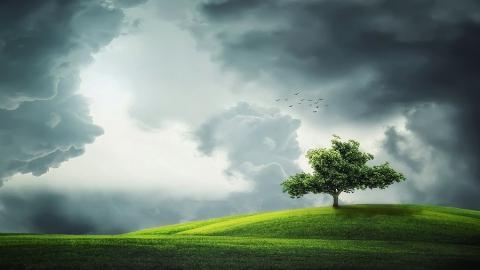 Дожди, грозы и ветер покидают Саратовскую область