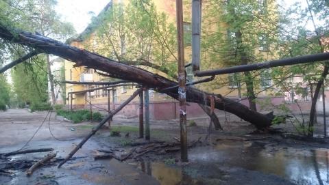 Упавшее дерево проломило теплотрассу
