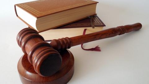 Суд вынес приговор охотнику за нелицензированное убийство животных