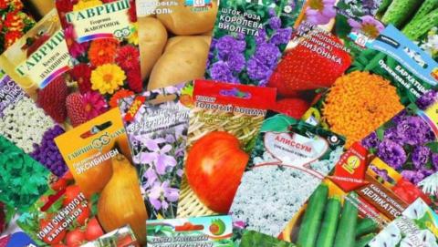 Граждан России и Белоруссии поймали на торговле подозрительными семенами и саженцами