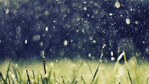 Ливни, грозы и шквалистый ветер задержатся в Саратовской области на сегодня