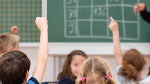 Детей из одной семьи предлагают закреплять за одними и теми же школами