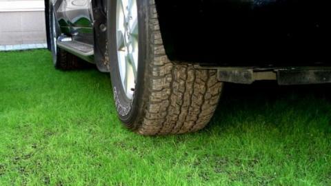 Сегодня за парковку на газонах оштрафовали еще четырех автохамов