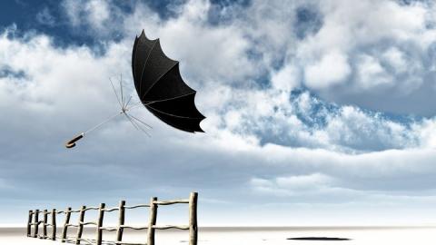 Сегодня – ветренно и прохладно