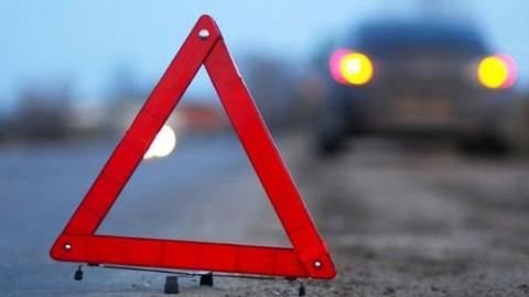 Два ребенка и две женщины разбились в перевернувшейся на ночной трассе машине