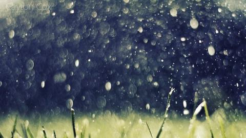 Сегодня над Саратовской областью обещают дожди с грозами и сильный ветер