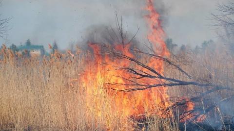 В Саратове объявлен высший класс пожарной опасности
