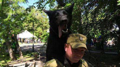 Росгвардейцы в День пограничника показали учебных собак