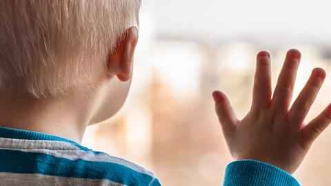 За пять лет иностранцы усыновили 51 саратовского сироту