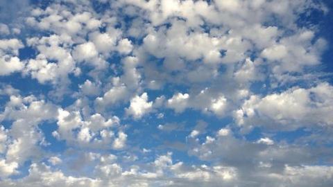 Температура воздуха в Саратовской области продолжит снижаться
