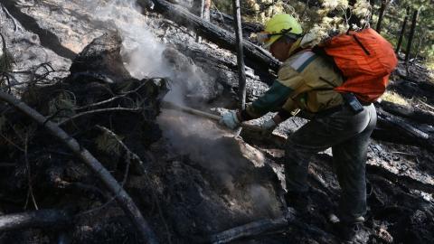 В выходные в Саратовской области возможны крупные лесные пожары