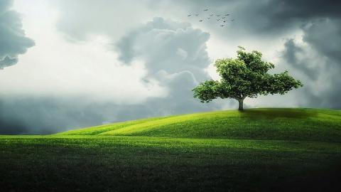 Жары не будет: синоптики предсказывают теплую погоду с порывистым ветром