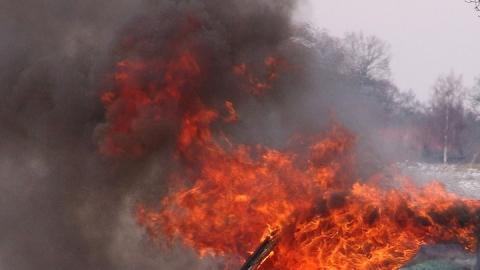 Сгоревший ВАЗ 2112 выжег поляну в 100 квадратных метров