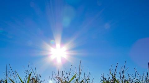 Яндекс: сегодня в Саратове – самый жаркий день за последние 10 лет