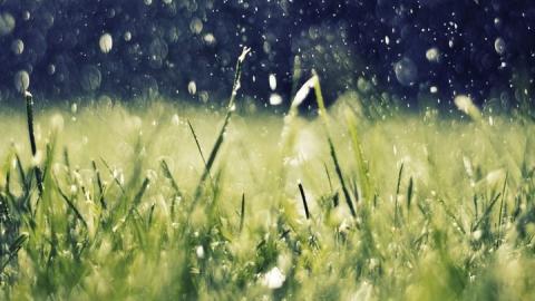 В Саратовскую область возвращаются дожди