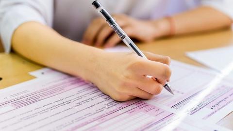 Пять выпускниц из Саратовской области получили высшие баллы по двум госэкзаменам