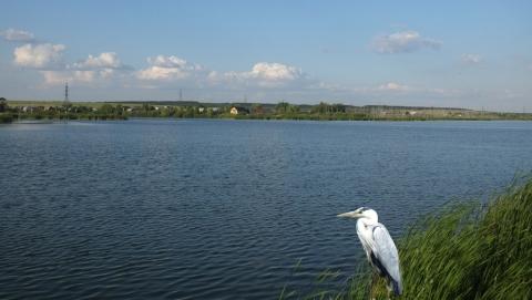 Тема самозахвата береговой полосы Александровского водохранилища получила мощное продолжение