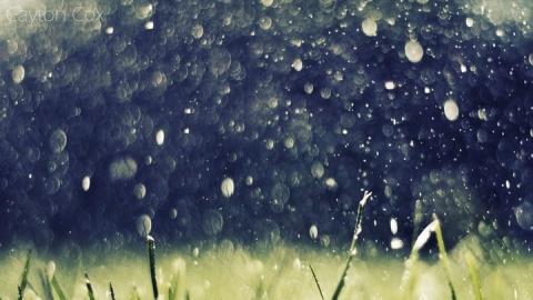 Сегодня в Саратовской области дожди с грозами и прохладно