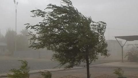 Жителям области угрожают грозы и шквалистый ветер