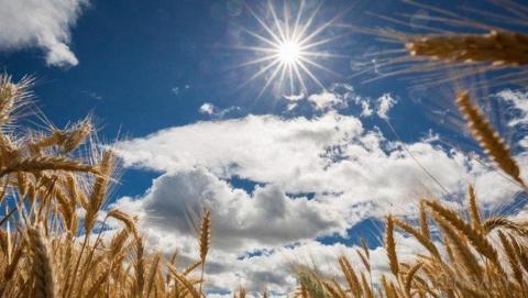 Саратовцев ожидает жаркая пятница без дождей