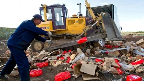 В Саратовской области за полгода уничтожили 2,11 тонны санкционных овощей и фруктов