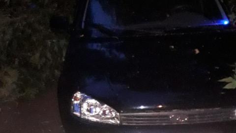 Рухнувшая ветка ночью повредила автомобиль