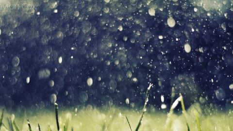 Сегодня в большинстве районов пройдут дожди, местами вероятны грозы