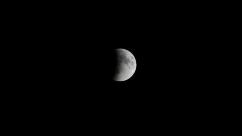 Жители Саратовской области смогут понаблюдать за «кровавой луной»