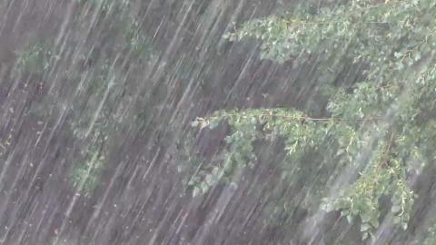 На Саратовскую область надвигается мощный ливень