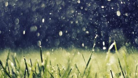Сегодня в Саратовской области дождливо, ветрено и жарко