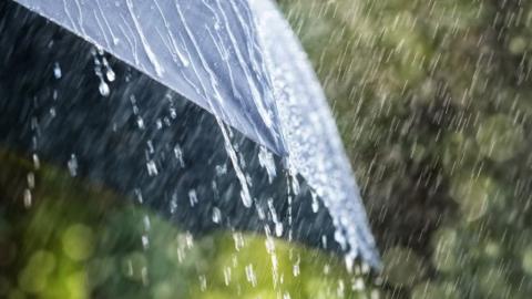 Синоптики обещают теплый день с непродолжительными дождями