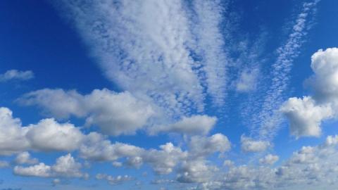 В Саратовской области сегодня сухо, прохладно и ветрено